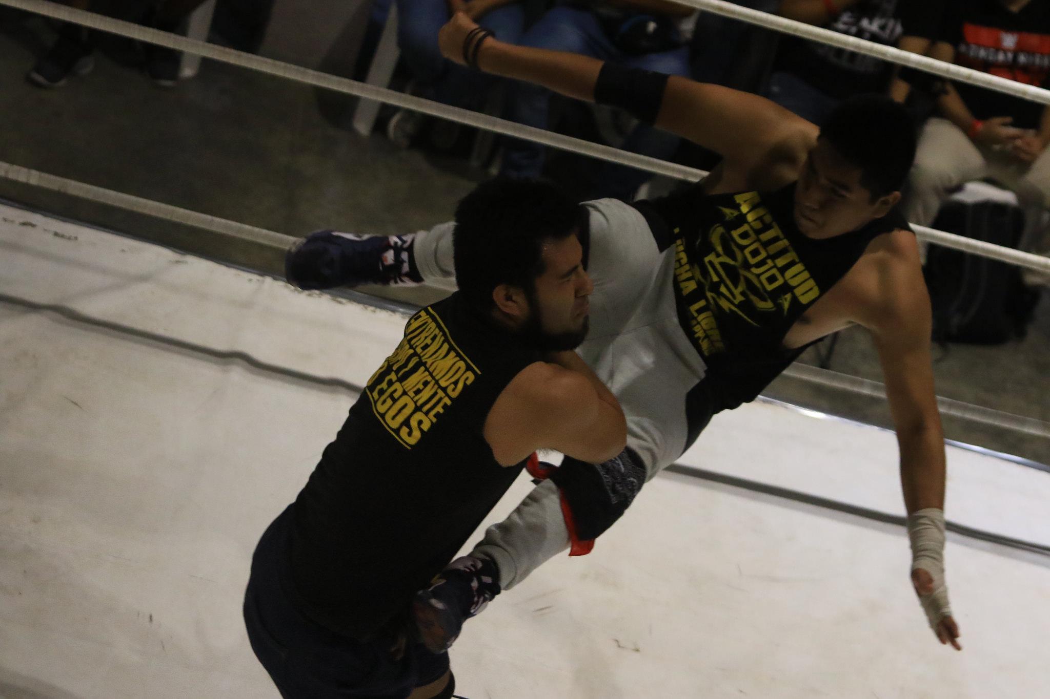 Escuela de Lucha Libre profesional